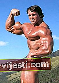 Arnold Schwarzenegger: Bio, Tinggi, Berat, Usia, Pengukuran